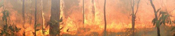 Bushfire_Mitagation