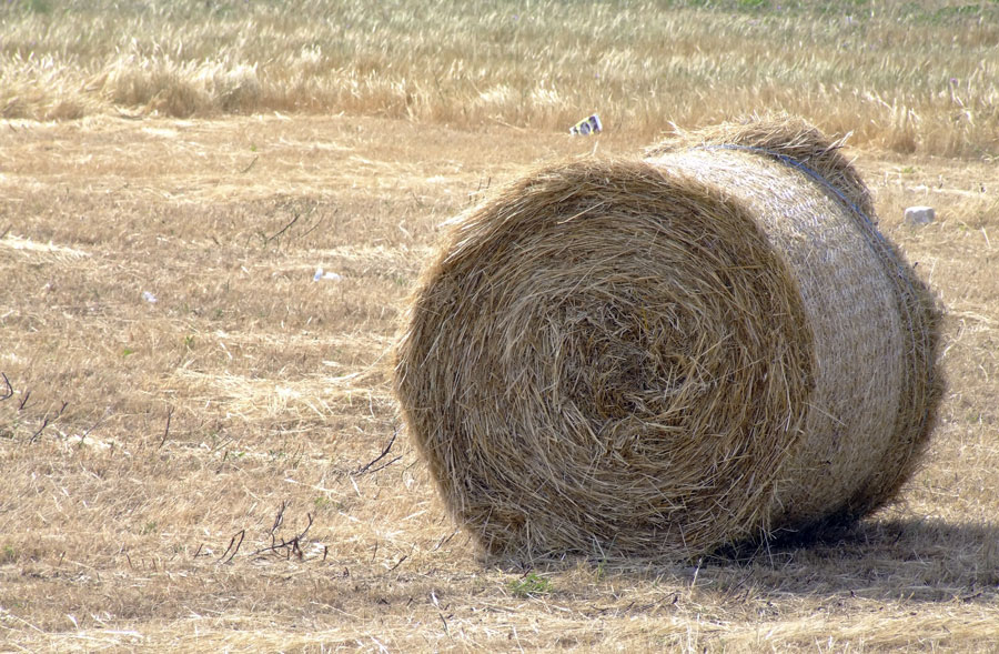 A ball of hay