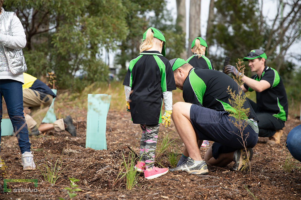 Stroud-Homes-Brisbane-East-ForestLink-Tree-Planting-Day-June-2019-3