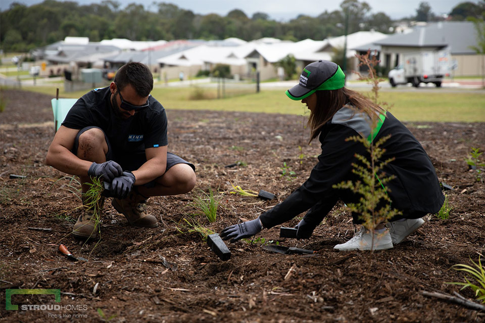 Stroud-Homes-Brisbane-East-ForestLink-Tree-Planting-Day-June-2019-7